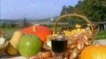 Drome Gite vacances weekend randonnée dans la drome Video de gite immozip