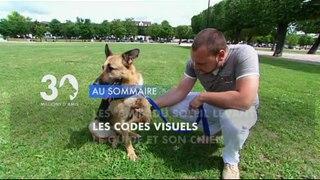 Sommaire émission 30 Millions d'Amis 9/3/2013