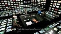 Les infiltrés - Trafic d animaux - Les mafias internationales - Partie 2 de 2