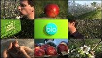 Minute Bio - L'innovation en agriculture biologique