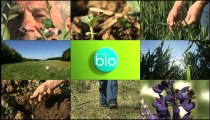 Minute Bio - Des sols vivants et fertiles