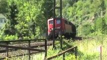 Züge südlich der Loreley, HGK-MEV 185, MRCE 189, 140, 181, 101, DBAG 185, 152, 3x 428