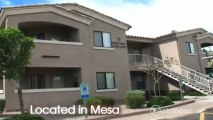 Bayview Apartments in Mesa, AZ - ForRent.com