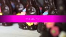 FILM CHOCOLATS VERSION JAPONAISE