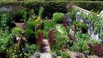 charme nature naturel beauté jardin fleur video accelerée 6 mois en 2mn30 flower garden gardening flowering plant animation jardin