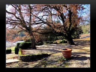 Vente vignoble Propriété domaine viticole à vendre dans le Var Coteaux Varois en Provence