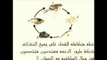 شركة مكافحة حشرات بالرياض 0534645698 تنظيف فلل تنظيف شقق تنظيف مجالس