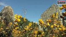 Carnac : Le printemps des Menhirs - Bretagne Télé