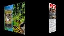 javier españa gran canaria fans º 1 gurpo las chelas fotos edital video
