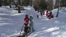 Ski-Snow-Chiens de traineaux