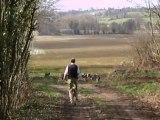 Vénerie du lièvre C :  Le départ pour la chasse