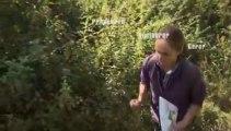 La biodiversité dans le Parc naturel régional du Vexin français
