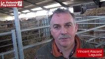 Bovins viande : performance et contrôle de croissance (Aveyron)