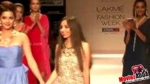 Isha Sharvani On Ramp For Pallavi Foley @ Lakme Fashion Week 2013 !