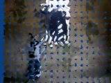 Harlem Shek au chateau de vaux-le-viconte