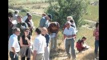 Mise en oeuvre de la charte paysagère du piémont - Emission RCF