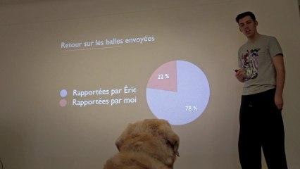 Abandonner son chien à l'aide d'un powerpoint