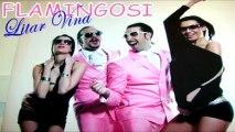 Flamingosi 2011 - Litar Vina