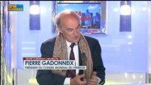 Pierre Gadonneix, Conseil Mondial de l'Énergie dans L'invité d'Hedwige Chevrillon - 4 avril 2013