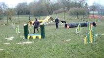 Entrainement d'agility 05/04/13