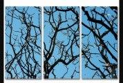2modern  Skyward Acrylic Panel  2modern  Skyward Acrylic Panel36x48almost Clear3 Panel