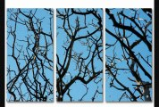 2modern  Skyward Acrylic Panel  2modern  Skyward Acrylic Panel40x60clearsingle Panel