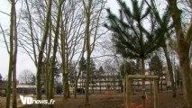 Le parc de Cergy-Préfecture se précise