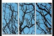 2modern  Skyward Acrylic Panel  2modern  Skyward Acrylic Panel40x60outreachsingle Panel