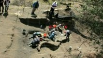 Ancient mammoth skeleton unearthed in Mexico City
