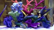 Jacksonville, FL. Aquatic Care, Aquarium Designs 905-588-2700 Jacksonville, Florida.