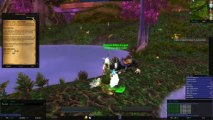 World Of Warcraft : Druide niv 1 à 5