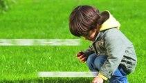 Sprinkler Start Up Falcon CO-Repair-Lawn-Aeration-Core -Sprinkler-Repair-Blowout-Winterization-Lawncare-lawn-Lawn Pros-719-963-6267