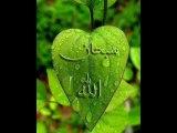 SURAH AL FAJR 89 SODAIS AND SHURAIM