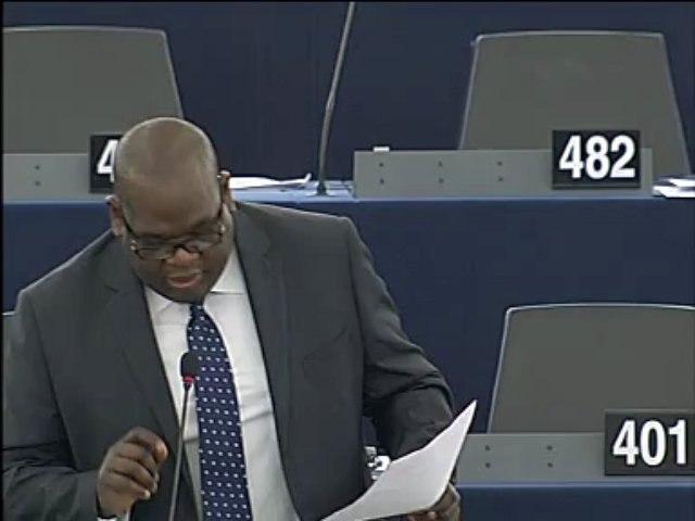 Jean-Jacob Bicep - ACP-UE (16-04_2013)