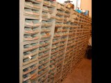 Bins Full of Fasteners, Bolts, Nuts, Screws for Sale