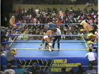 32. 92-02-29 Barry Windham & Dustin Rhodes vs. Larry Zbyszko & Steve Austin (SuperBrawl II)