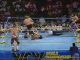 37. 92-06-16 Rick & Scott Steiner vs. Steve Williams & Terry Gordy (Clash XIX)