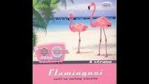 Flamingosi - Litar vina - (Audio 2011) HD