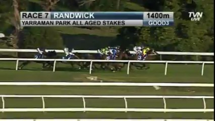 All Too Hard - ALL AGED STAKES 2013
