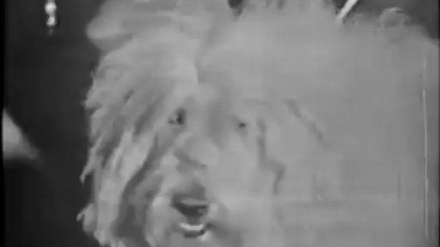 """Annette """"Jo-Jo The Dog Faced Boy"""" (1959)"""