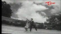 Vichitra Kutumbam Songs - Kaachuko Choosuko - Krishna - Vijaya Nirmala