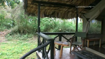 Migunga Forest Camp  Lake Manyara National Park  Tanzania