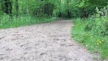 Aitch court au Bois de Vincennes