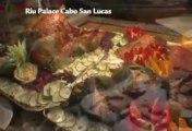 Hotel Riu Palace Cabo San Lucas - Los Cabos Hotels - Riu Hotels & Resorts Mexico