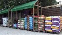 Jardinerie Farrenq à St Maur des Fossés