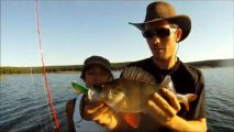 Roussillon Fishing - Pêche des carnassiers Brochet, Sandre, Silure, Perche, Black Bass, Truite