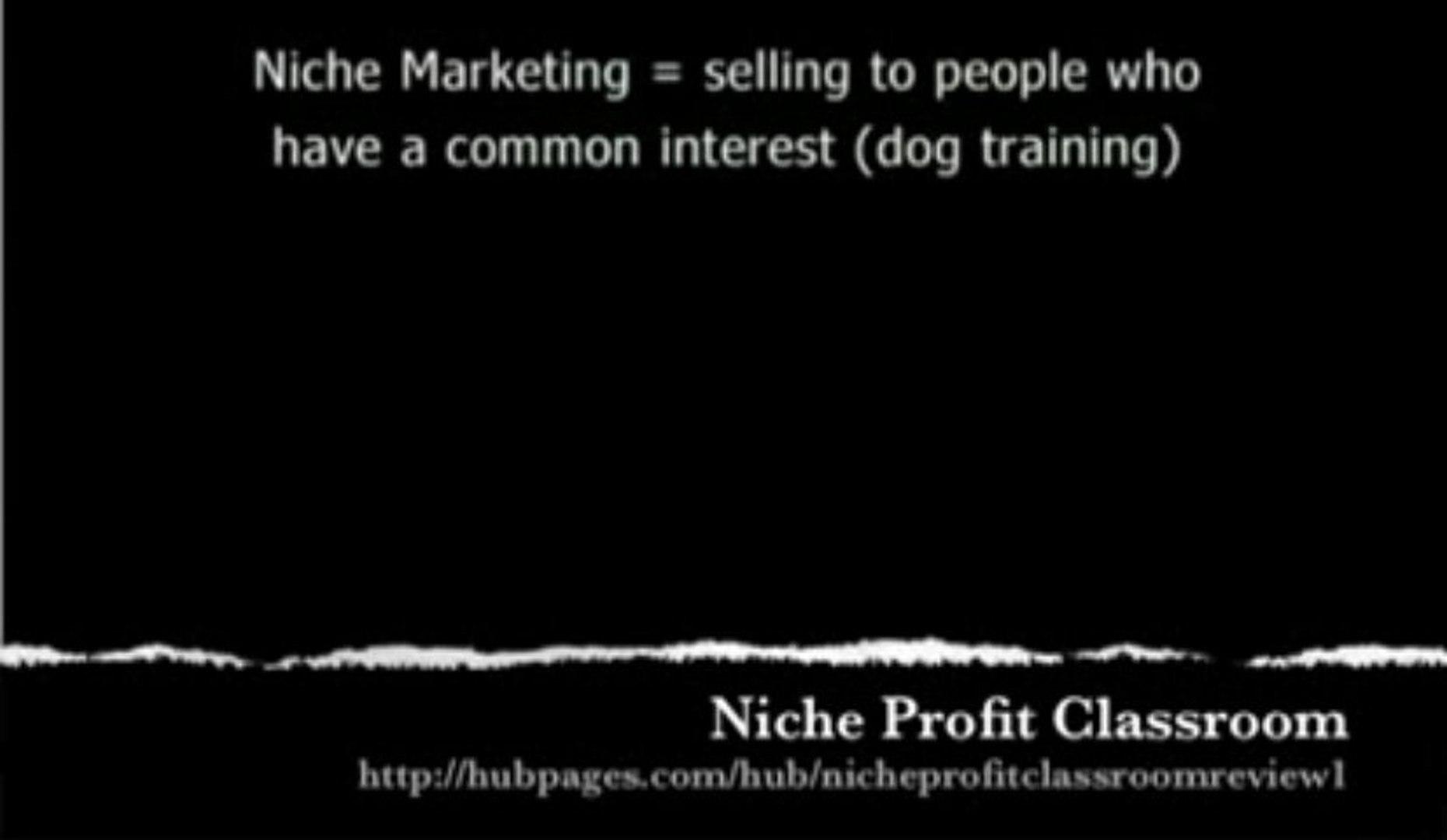 Niche Profit Classroom | Niche Profit Classroom