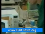 Wireless Microwave Radiation, Cell Phone Radiation Shield