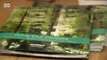 Mittel gegen die Krise - Irlands Wälder stehen zum Verkauf | Made in Germany