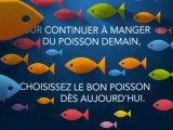 Bien choisir son poisson, c'est bon pour la Mer, c'est bon pour vous !